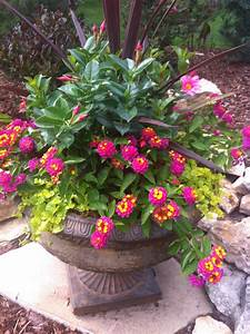 A beautiful container filled with pretty lantana ...