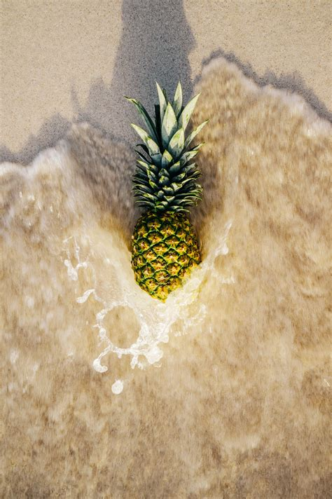 Yellow And Green Pineapple Fruit Near Sea And 183 Free Stock Photo