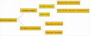 Nursing Pharmacology  Management Of Hypertension