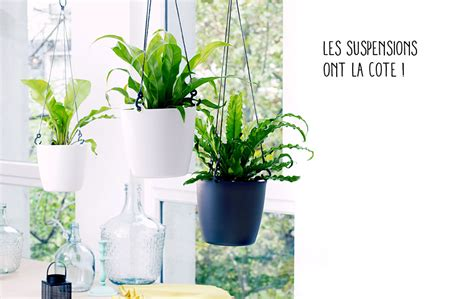 suspension pour plante exterieur atlub