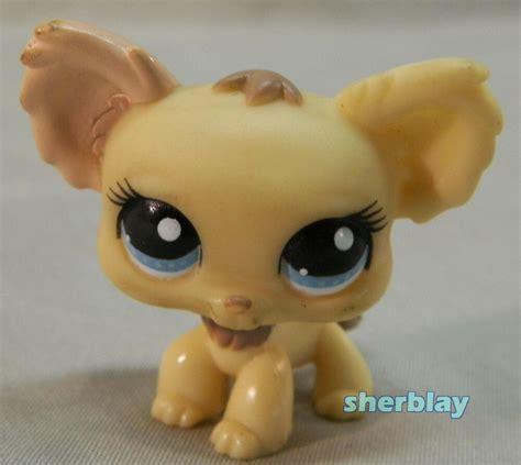 lps littlest pet shop figure chihuahua  long hair ebay