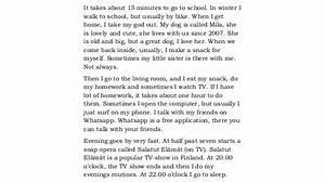 Last summer holiday essay