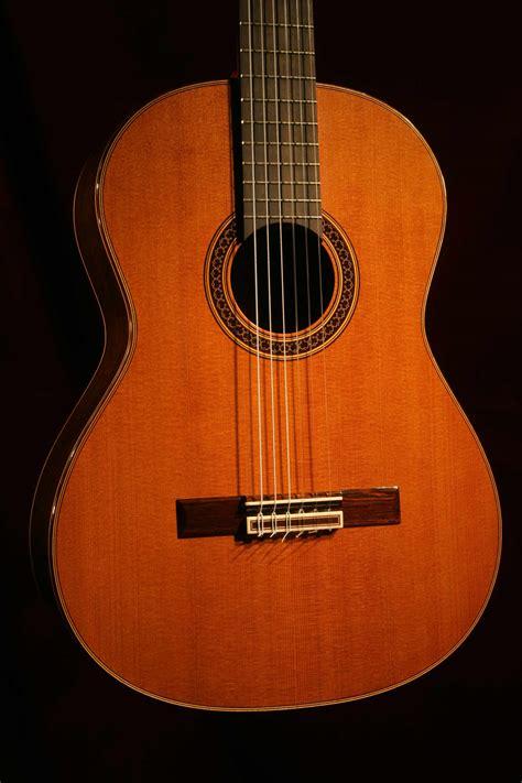Indian Rosewood and Redwood Guitar - Daily Guitars