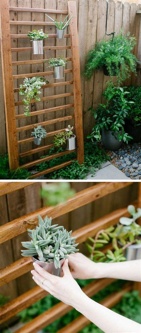 creative indoor  outdoor succulent garden ideas