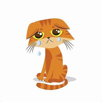 Sad Cat Crying Cartoon Meme Vector Clipart