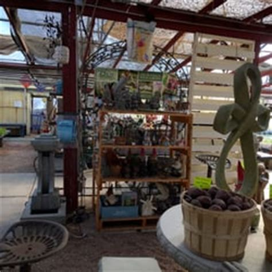 youngs garden center s market garden center 12 reviews fruits