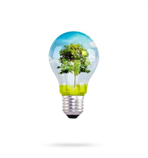 inside of a light bulb energy saving vectors photos and psd files free download