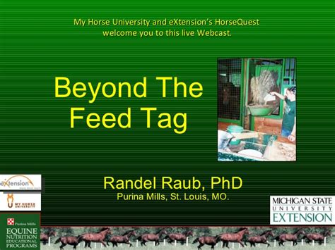 Beyond the Feed Tag: Horse Feed Ingredient, Quality