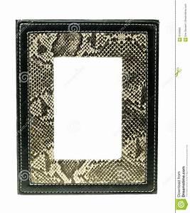 Cadre De Tableau : cadre de tableau de peau de serpent image stock image du ~ Dode.kayakingforconservation.com Idées de Décoration