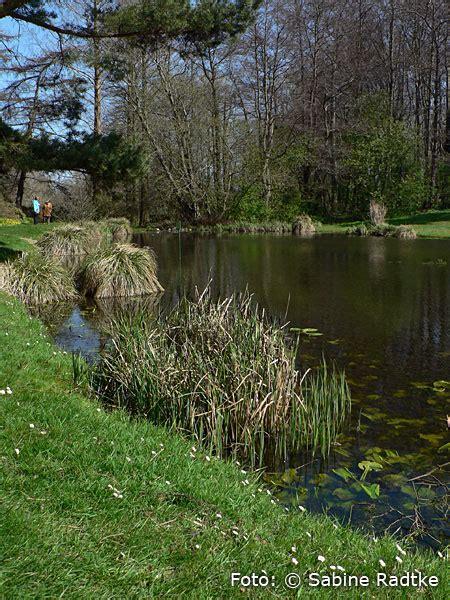 Botanischer Garten Rostock by Botanischer Garten Der Universit 228 T Rostock