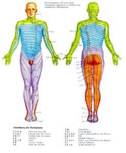 Dermatome Distribution Foot