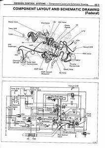 1986 Toyota Corolla Carburetor Vacuum Diagram
