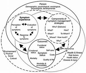 Revised Symptom Management Conceptual Model  Dodd Et Al
