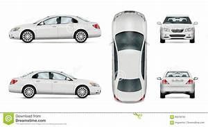 White Vector Car  Sedan Template Cartoon Vector