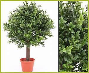 Wetterfeste Kunstpflanzen Balkon : wetterfeste pflanzen kaufen wetterfeste pflanzen f r drau en ~ Michelbontemps.com Haus und Dekorationen