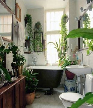 plante verte salle de bain inspiration d 233 co des plantes vertes dans la salle de bain cocon de d 233 coration le