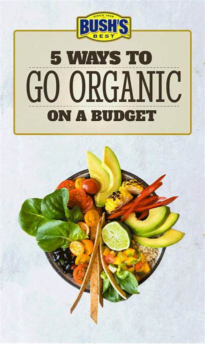 Organic Recipes Buying Healthy Easy Natural Bushbeans