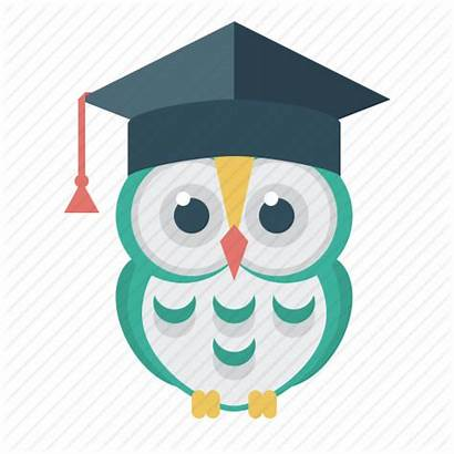 Owl Education Icon Wise Student Cap 512px