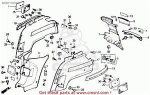 Honda Reflex 250 Wiring Diagram