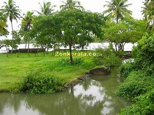 Awesomeness Wallpaper: Kerala Natural Beauty a