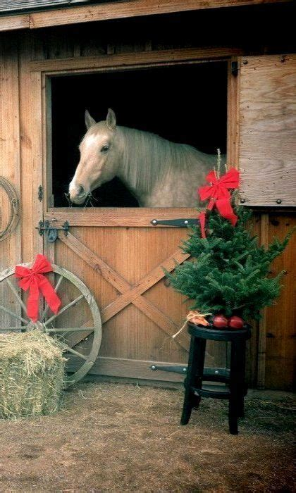 christmas decorating with horses 1000 ideas about stall decorations on stall decorations stall signs and