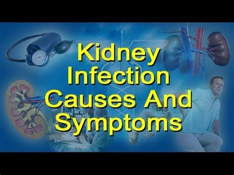 kidney infection causes symptoms glomerulonephritis and