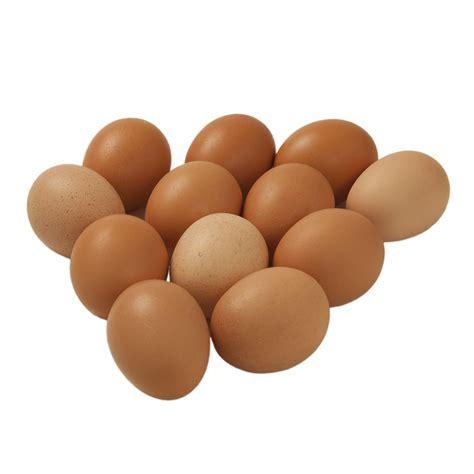 Free Run Large Eggs   Dairy   Conestoga Farms
