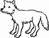 Coyote Coloring Printable sketch template