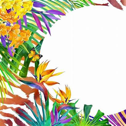 Tropical Background Nature Watercolor Flowers Leaves Tiger