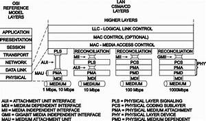 Ie103  Introduction To Fast Ethernet