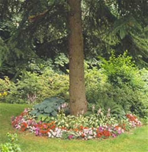 flowers  shade trees  homes gardens