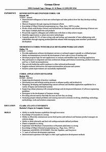 Programmer Resume Sample Cobol Resume Samples Velvet Jobs