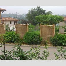 Selbst Gemacht Sichtschutz Für Den Garten Bauende
