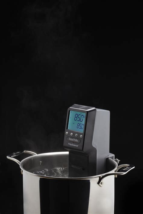 vide sous immersion circulator professional polyscience usa