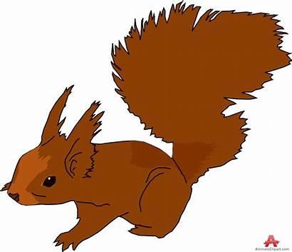 Squirrel Clipart Clip Realistic Brown Squirrels Cartoon
