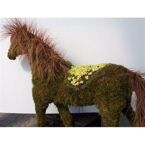 Horse Topiary  Frame Only  Moss Filled  Five Sizes