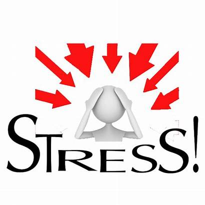 Stress Tolerable Toxic Stressed Don