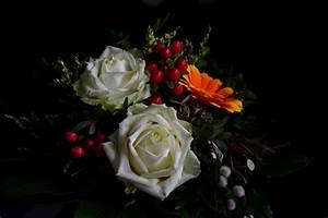 Bilder Von Blumenstrauß : einen sch nen blumenstrau foto bild natur kreativ aufnahmetechniken natur fine art ~ Buech-reservation.com Haus und Dekorationen