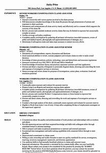 property claims adjuster resume sample top 8 workers With claims adjuster resume template