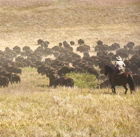 wo ist westen usa south dakota mehr wilder westen geht nicht welt