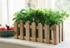 Windowsill Herb Planter by Kitchen Herb Windowsill Planter 35cm 163 12 99