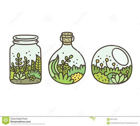 glass bowl with plants plant in terrariums stock vector illustration of clipart