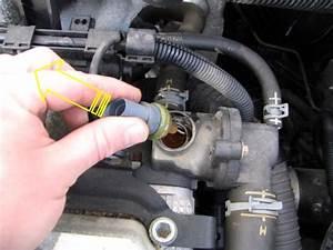 2005 Ford Escape Coolant Temperature Sensor Location 2005 Ford Escape Water Pump Belt Elsavadorla