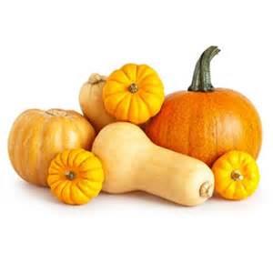 courges de potirons les vari 233 t 233 s interfel les fruits et l 233 gumes frais les fruits et
