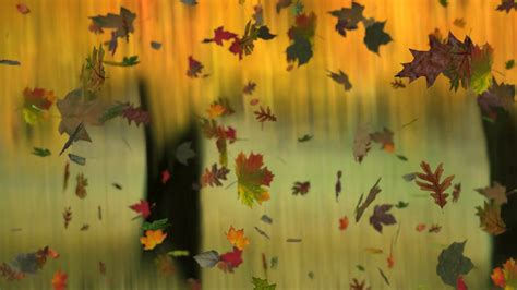 Autumn Animated Wallpaper - autumn background images 183