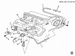 Gm Vacuum Diagrams 1996 Lt1  Gm  Free Engine Image For User Manual Download