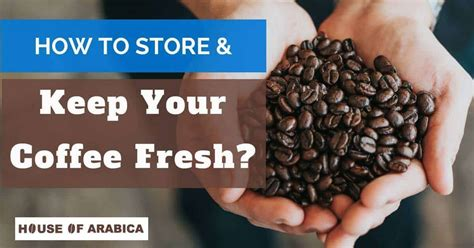 And some other important informative points relevant to. How To Store Coffee Beans? (And Keep Your Coffee Fresh) | Fresh ground coffee, Pumpkin spice ...