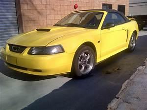 2001 Mustang GT Convertible | Mustang gt, Mustang, Convertible