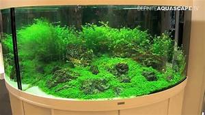 Juwel Trigon 350 : aquarium ideas from interzoo 2014 juwel trigon and vio aquariums youtube ~ Frokenaadalensverden.com Haus und Dekorationen