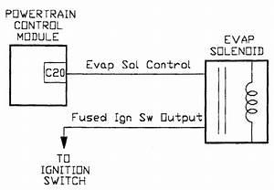 2002 Dodge Dakota Evap System Diagram